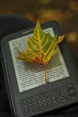 Autumn Reads